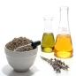 Lavender Oil for Stretch Marks